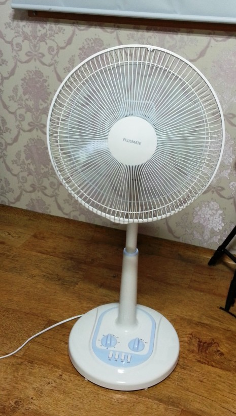 Korean Fan Death - my fan